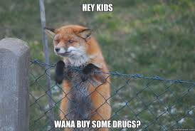 Meme Fox - hey kids wana buy some drugs sketchy fox quickmeme
