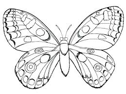 coloring page butterfly monarch monarch butterfly coloring page good monarch butterfly coloring page