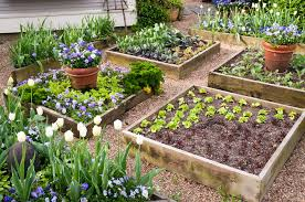 what to plant in a raised garden bed gardening ideas