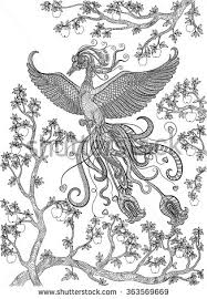 apple tree coloring page hand drawn bird firebird on a branch apple tree coloring page