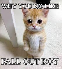 Why You No Meme Generator - meme creator why you no like fall out boy meme generator at