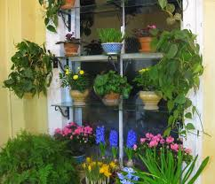 garden greenhouse ideas decorations small glass window with natural flower garden idea