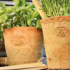 set of terracotta plant pots by idyll home notonthehighstreet com
