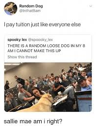 Sallie Mae Memes - random dog l pay tuition just like everyone else spooky lex there is