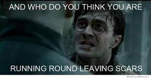 Harry Potter Meme - 15 awesome harry potter memes page 15 of 16