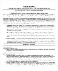 Sales And Marketing Manager Resume Examples by Sample Seo Resume Editor Cv Sample Overseeing The Layout And