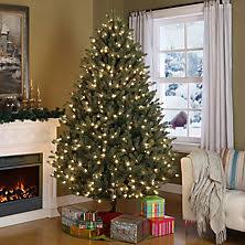 where can i find a brown christmas tree christmas decor sam s club