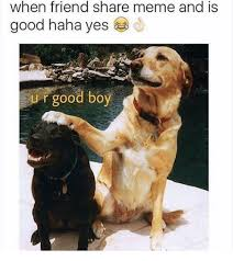 Sharing Meme - 25 best memes about sharing meme sharing memes