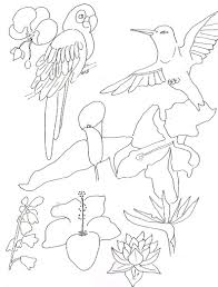 to print tropical coloring pages 52 for your free coloring kids