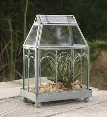 top 10 best terrariums u0026 wardian cases for your home