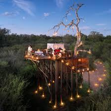 roar africa luxury african safari giveaway for 2 wildluxe