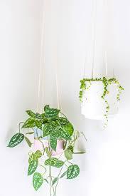Hanging Plant Diy Hanging Planter Upgrade