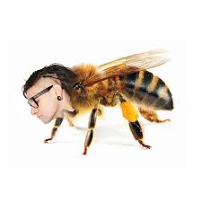 Skrillex Bee Meme - obligatory skrillex joke you know exactly what to expect by the