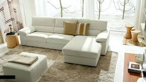Sofa Designs For Small Living Rooms Living Room Coach Home Design Living Room Furniture Genuine