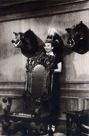 223 best i love lucy images on pinterest lucille ball vivian