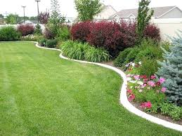 Backyard Plants Ideas Landscaping Plants For Privacy Backyard Plants For Privacy Best