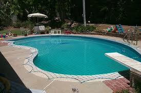 How Do You Spell Backyard The Safest U0026 Most Dependable Pool Fences And Pool Safety Nets