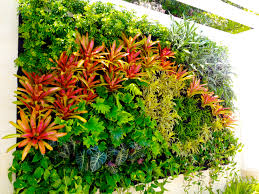 Shade Garden Vegetables by 17 Amazing Vertical Garden Designs Plants Gardens And Walls