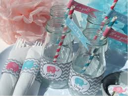 gender reveal party decorations baby shower pink blue elephant