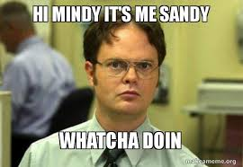 Mindy Meme - hi mindy it s me sandy whatcha doin schrute facts dwight
