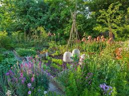 coping with an overgrown vegetable patch saga