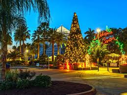 magic winter lights dallas the best texas hotels for a magical holiday getaway culturemap dallas
