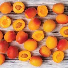 ediable fruit fruit trees plants edible garden the home depot