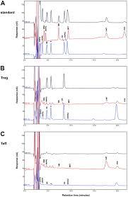 human cd4 cd25 regulatory t cells selectively express tyrosine
