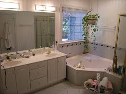 bathroom bahtroom casual window on plain wall paint closed plant with tub grab shower