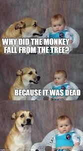 Neuroscience Meme - why is dark humor funny science abc