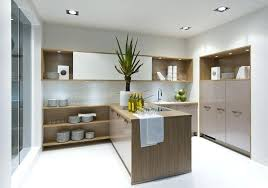 kitchen cabinets chicago suburbs chicago cabinet contemporary kitchen cabinets for the dreaming