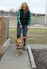 Tim Barnes St Louis Rams Rams At The Sedalia Animal Shelter News Sedaliademocrat Com