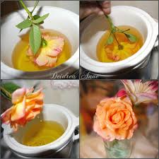 How To Preserve Fresh Flowers With Wax Wax Did You Know And Dips