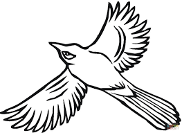 blue jay bird coloring page flying jay coloring page free