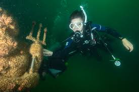 Alabama snorkeling images Poseidon 39 s playground adds to alabama 39 s diving opportunities jpg