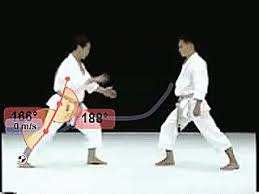 imagenes gif karate karate biomechanics gif find download on gifer
