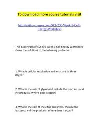 cell energy worksheet solar worksheet 1 template fts e info