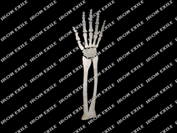 Halloween Skeleton Cut Out by Skeleton Arm Metal Plasma Cut Out Stencil For Rat Rod