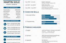 Resume Example Education Contemporary Decoration Resume Examples For Teachers With