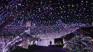 Outdoor Net Lights Net Lights Outdoors Walmartchristmas Large