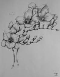 freesia tattoo google search random tattoos pinterest
