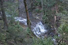 Fall Creek Falls Map Hedge Creek Falls Trail Hike Mt Shasta