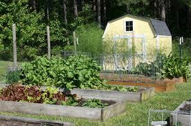 pathways for a raised bed vegetable garden u2013 home garden joy