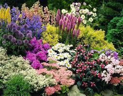 Planning A Flower Garden Layout Flower Garden Edge Ideas Hydraz Club