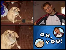 Oh You Dog Meme Generator - template oh you know your meme