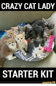 Funny Cat Lady Memes - crazy cat lady starter kit ifunnyco starter kit meme on me me