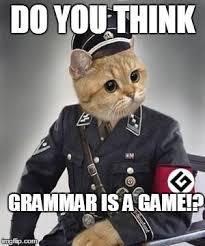 Grammer Nazi Meme - grammar nazi cat imgflip