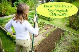 Garden Layout Tool Vegetable Garden Layout Tool Vegetable Garden Planner Software