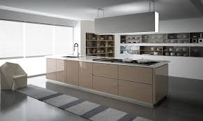 contemporary and solid wood traditional kitchen cabinetry euro