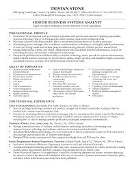 Business Analyst Objective In Resume Additional Qualification In Resume Sample Essay On Urie